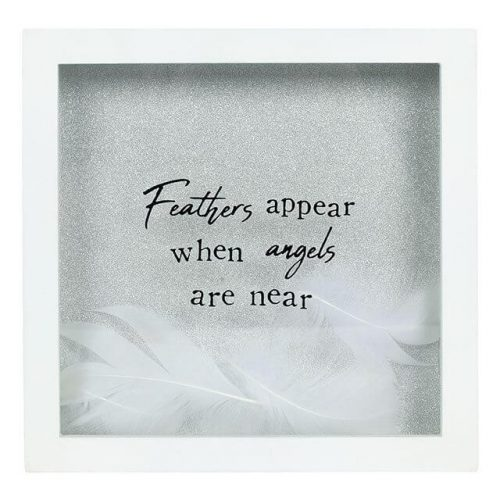 feathers-appear-picture
