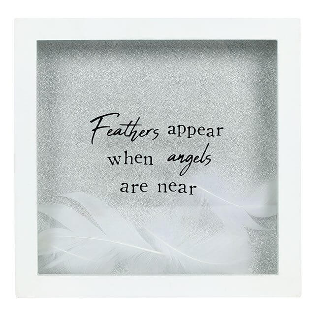 'Feathers Appear' Picture Frame